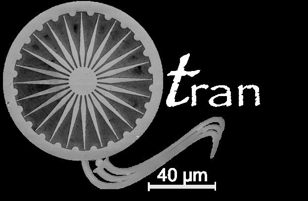Qtran lab, IISER TVM
